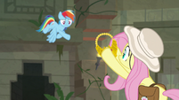 Rainbow tosses Truth Talisman to Fluttershy S9E21