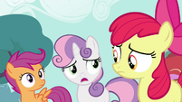 """Sweetie """"All these ponies really wanna meet"""" S4E15"""