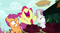 "Apple Bloom ""I'm gonna have a sister-in-law!"" S9E23"