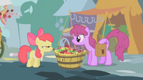 Apple Bloom and Berryshine look at each other S1E12