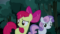Apple Bloom wants to keep going S5E6