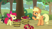"""Applejack """"knocked down by the wind"""" S9E10"""