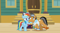 Rainbow puts a hoof around Quibble S9E6