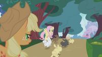 S01E04 Fluttershy z Applejack patrzą na króliczki