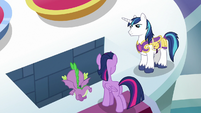 Shining shows trapdoor to Twilight and Spike S9E4