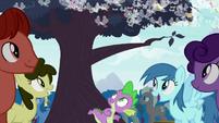 Spike spots a tree S4E16