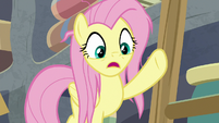 """Fluttershy """"that extract is in short supply!"""" S9E18"""