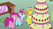 Pinkie Pie, The Cakes, and Cake S2E24