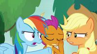 "Rainbow Dash ""end of story!"" S8E9"