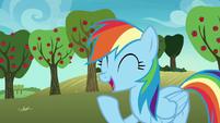 Rainbow Dash having a laugh S8E5