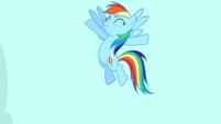 """Rainbow Dash """"exactly!"""" S4E12"""