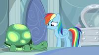 Rainbow Dash contemplating S05E05