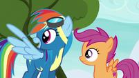 Rainbow Dash explaining to Scootaloo S6E7