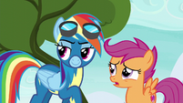 """Scootaloo """"what are we doing up here"""" S6E7"""