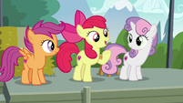 Apple Bloom -we found the first activity of the day- S7E21