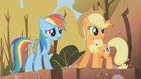 Applejack and Rainbow Dash2 S01E13