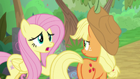 "Fluttershy ""I wish she'd told us"" S8E23"