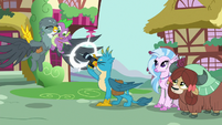 Gallus takes a picture of Spike and Gabby S9E19