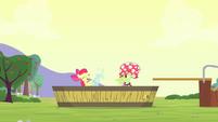 S04E20 Babcia Smith i Apple Bloom wspólnie się bawią