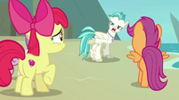 """Terramar """"if you all can't even agree"""" S8E6"""