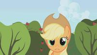 Applejack -I'm on my own- S1E04