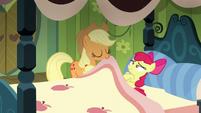 Applejack pulling Apple Bloom's blanket S5E04