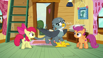 Gabby suddenly hides her cutie mark S6E19