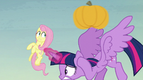 Twilight and Fluttershy dodge yet another pumpkin S5E23