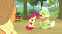 Apple Bloom sympathetic; Granny laughs S9E10