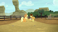 Braeburn notices the Crusaders missing S5E6