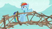 """Rainbow """"why didn't I think of branches"""" S8E9"""
