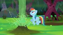 Rainbow watches the geyser blast water S8E17
