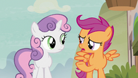 """Scootaloo """"what about Cheerilee?"""" S7E8"""