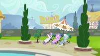 Sweetie Belle, Diamond Tiara, and Silver Spoon poolside S4E15