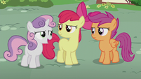 Sweetie Belle -she could use a friend or two- S5E18