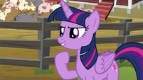 Twilight Sparkle --let's do this!-- S6E10