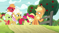 AJ and family catch up with Apple Bloom S9E10