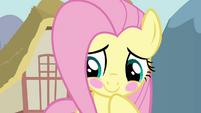 Fluttershy bashful blush S03E10