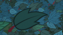 Leaves of green covering the screen S8E6