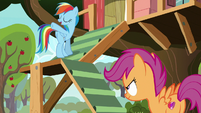 """Rainbow Dash """"throw 'em off a cliff"""" S8E20"""