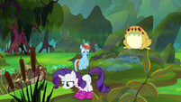 Rarity sniffing around the swamp S8E17