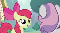Apple Bloom talking to Sweetie Belle S2E05