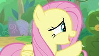 "Fluttershy ""time away to be a Nirik"" S8E23"