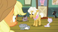 AJ and Goldie see Apple Bloom is gone S9E10