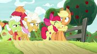 Apple Bloom hugging Applejack with joy S9E10