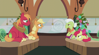 Applejack -that IS important!- S5E20