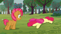 Babs sees Apple Bloom on the ground S3E08