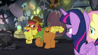 """Cattail """"both, I suppose"""" S7E20"""