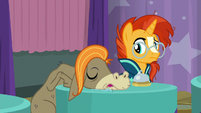 Cranky Doodle falls asleep on the table S9E16