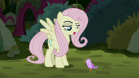 Fake Fluttershy -you tried to fly out of the nest- S8E13
